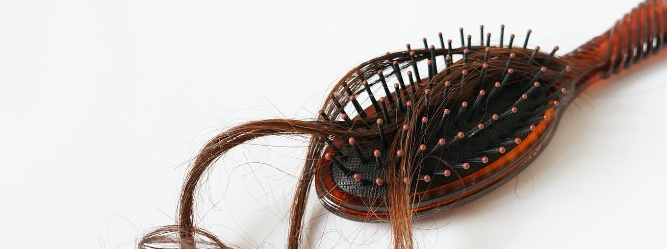 Hairbrush with hair strands
